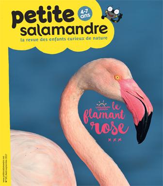 ABONNEMENT LA PETITE SALAMANDRE -  4 A 7 ANS - BIMESTRIEL 1 AN  6 N? PAPIER